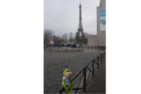 Harry in Paris
