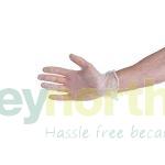 Vinyl Powdered Gloves Medium